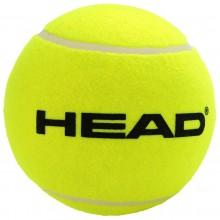 PALLA GIGANTE HEAD